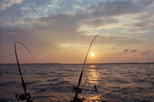 Nelson charters grand haven weather and fishing maps for Grand haven fishing report